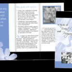 Fox Chase Cancer Center Breast Brochure
